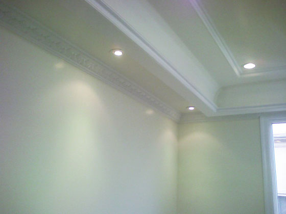 House Located in Brookly, NY. - Ceiling - Displaying Moldings and Ceiling Lights